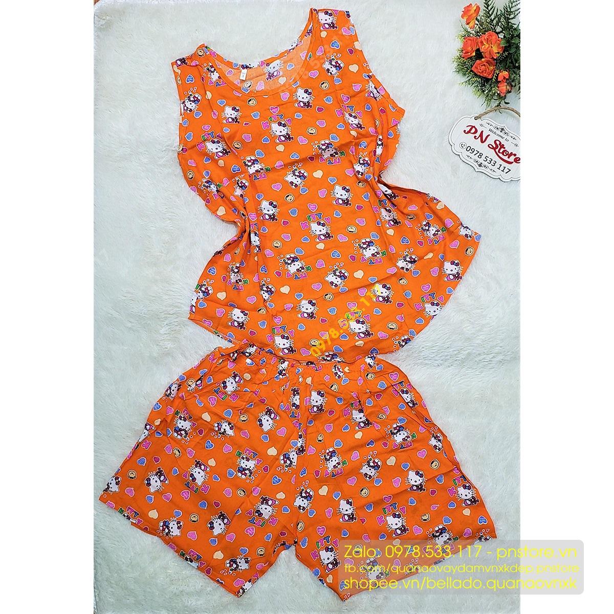 Đồ bộ đùi tole lanh mặc nhà nhiều họa tiết đẹp (đủ size) - PN77733