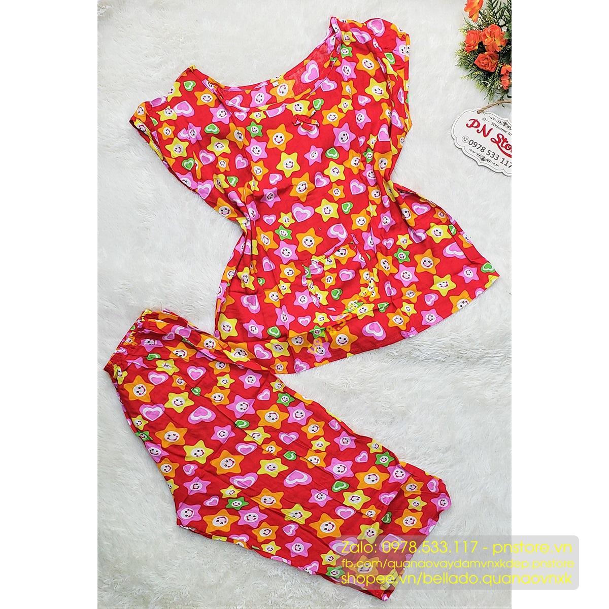 Đồ bộ tole lanh mặc nhà nhiều họa tiết đẹp (đủ size) - PN99652